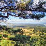 Widok na góry ze schroniska Szczeliniec