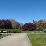 Widok na Muzeum Współczesne we Wrocławiu z pobliskiego skweru.